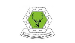 <p><strong>Killarney Chamber of Tourism &amp; Commerce</strong></p> <ul> <li>Carried out a High-Level Scan Audit of Killarney Chamber's website and produced a WCAG AA Gap Analysis Report</li> </ul>